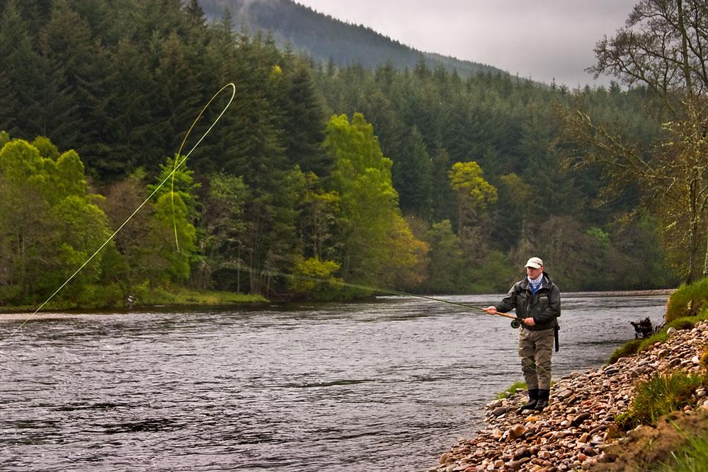 IMAGE: http://www.capnfishy.co.uk/images/2009_misc_photos/8483.jpg