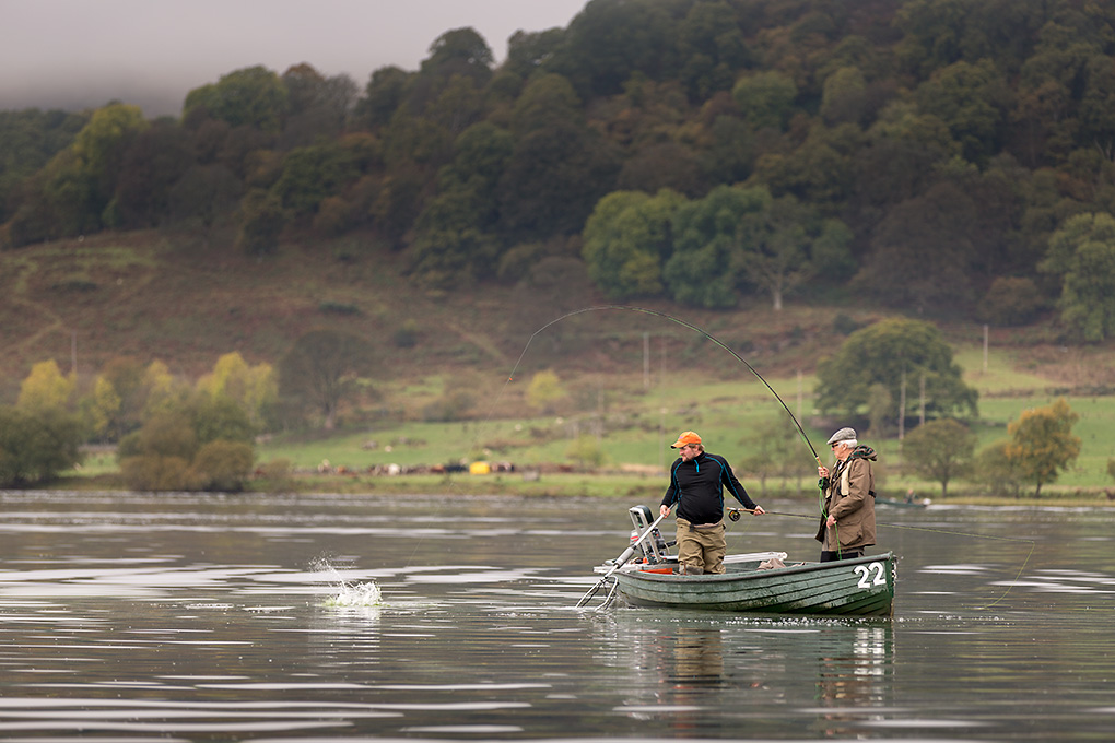 IMAGE: http://www.capnfishy.co.uk/images/2014%20Outings/Ment12Oct14/Menteith12Oct14_7386.jpg