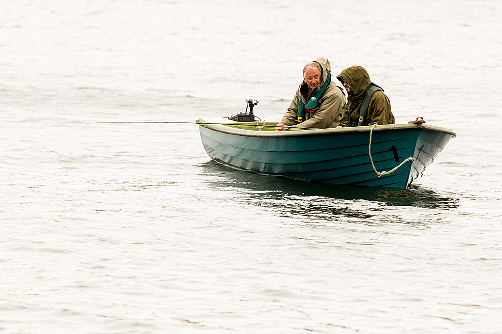 IMAGE: http://www.capnfishy.co.uk/images/Coldingham08May13/Coldingham08May13_1258.jpg