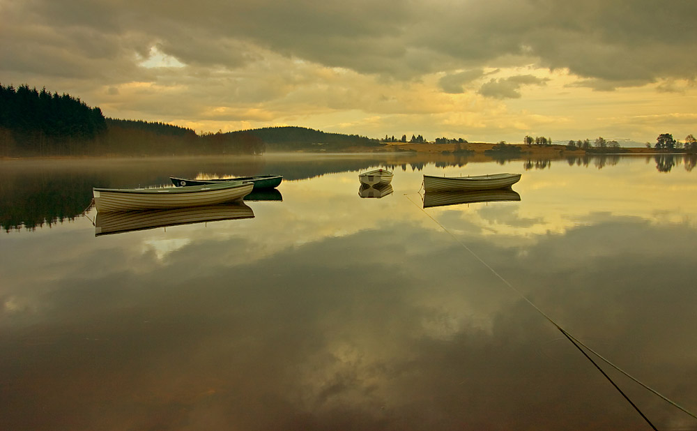 IMAGE: http://www.capnfishy.co.uk/images/Fisheries/Trossachs/Mar-067551.jpg