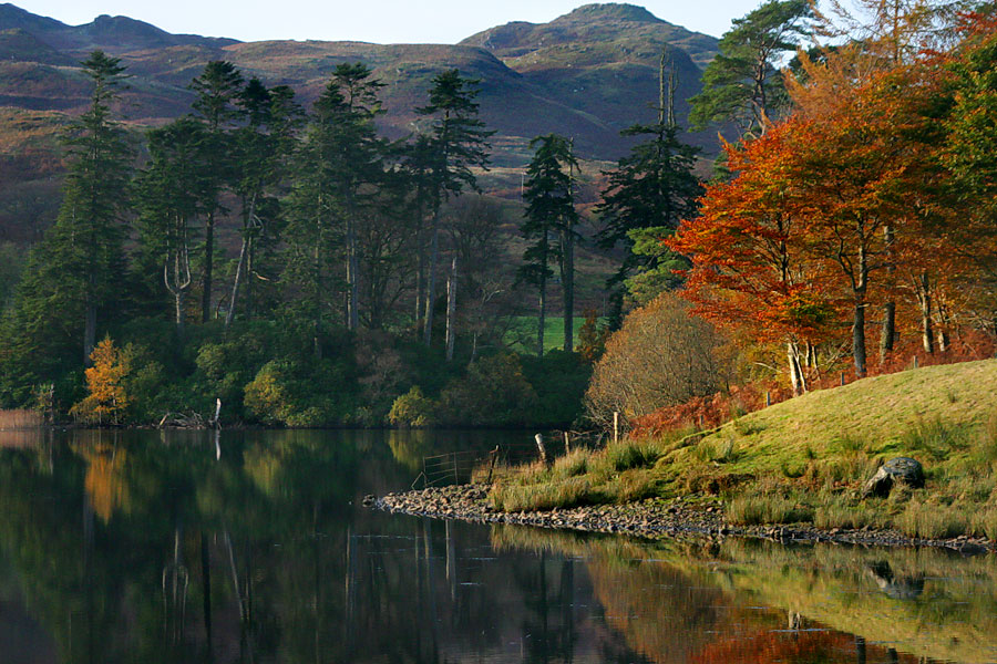 IMAGE: http://www.capnfishy.co.uk/images/My%20views/Scotland/1645.jpg