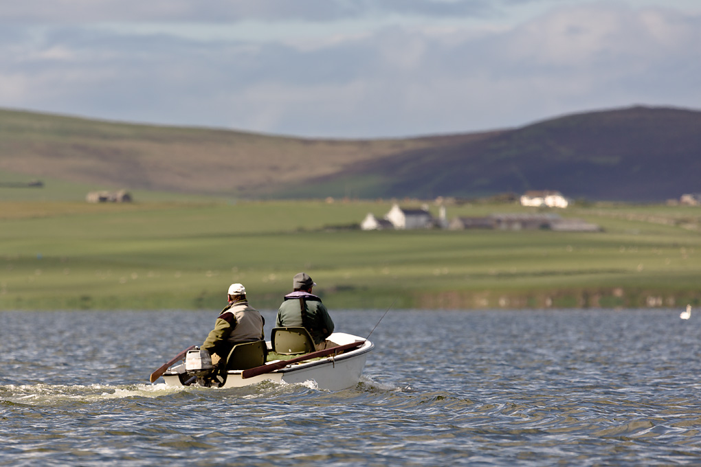 IMAGE: http://www.capnfishy.co.uk/images/Orkney2012/Orkney2012_2760.jpg