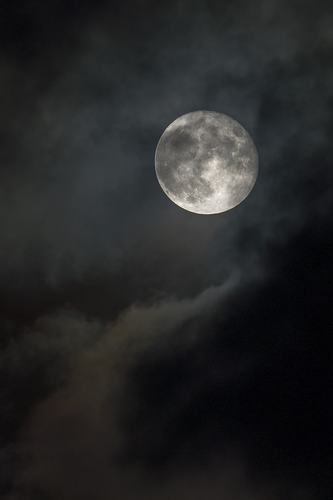 IMAGE: http://www.capnfishy.co.uk/wp-content/uploads/2015/02/Supermoon15Nov16_3651.jpg