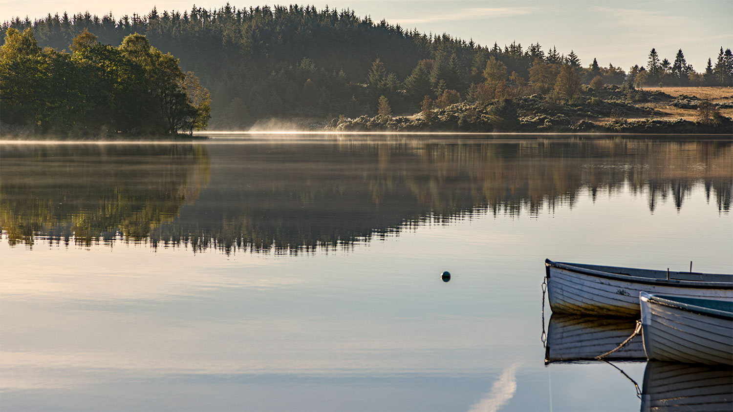 IMAGE: http://www.capnfishy.co.uk/wp-content/uploads/2019/09/Trossachs20Sep19_1487-HDR.jpg