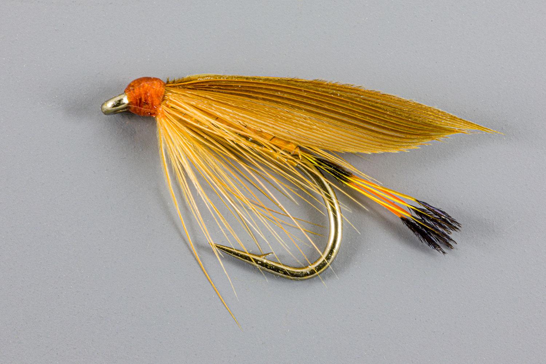 Cinnamon-Golden-Plover_7723.jpg