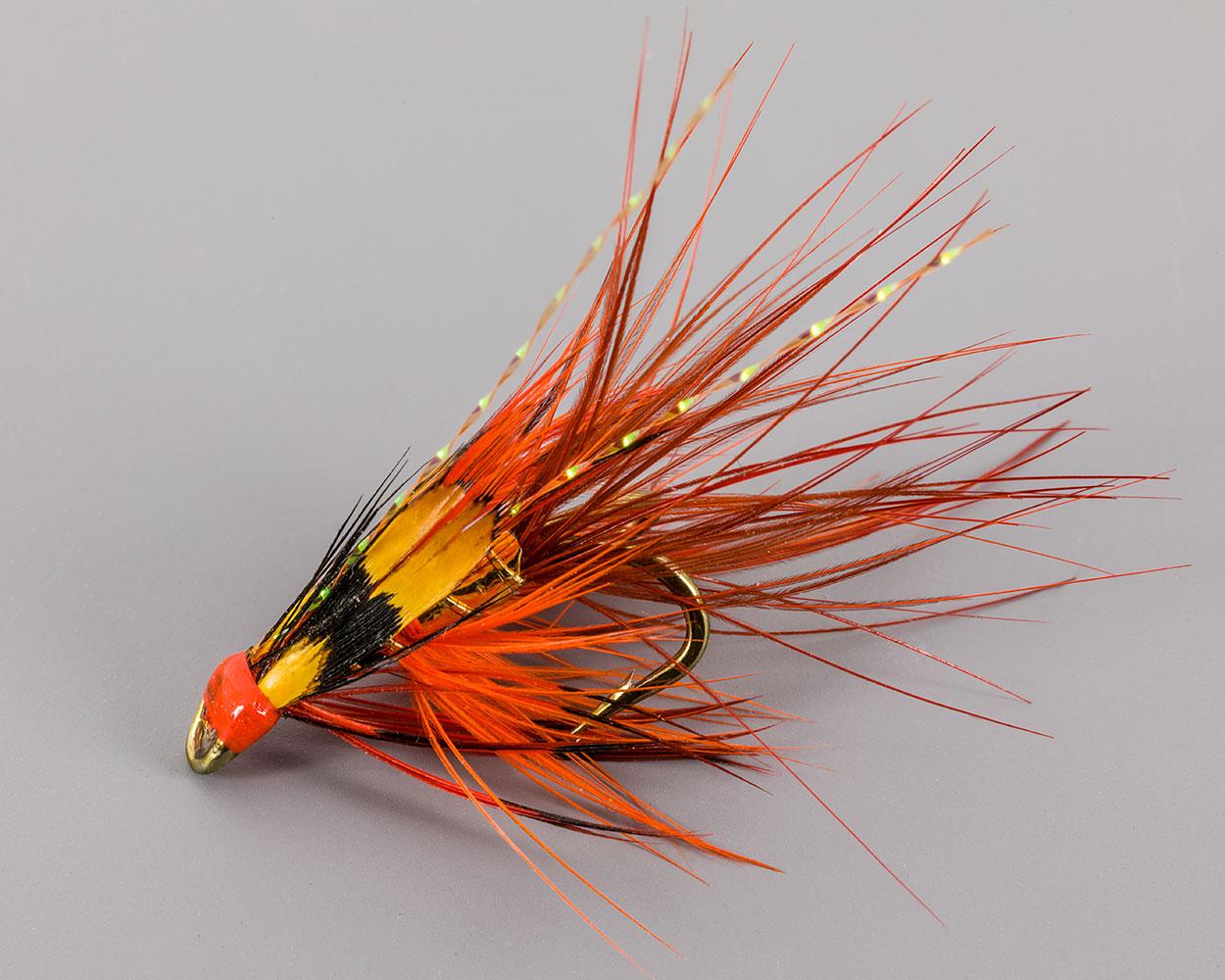 Shrimp07Dec18_7971.jpg