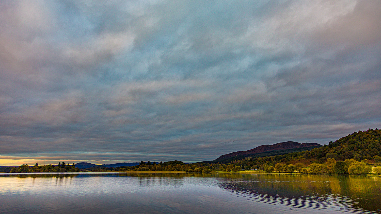 Menteith16Oct20_4326-HDR.jpg