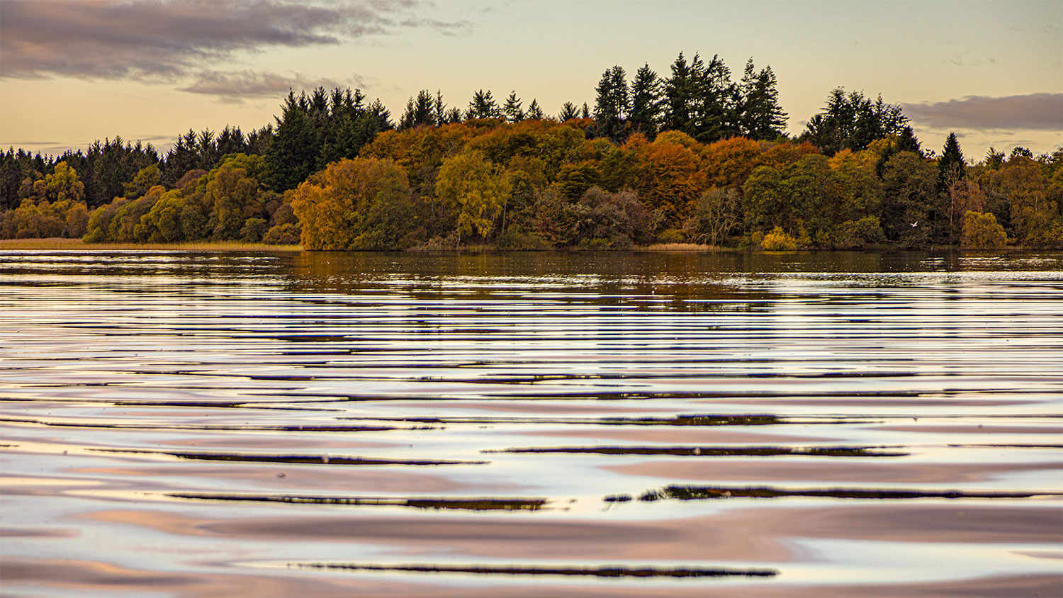 Menteith16Oct20_4341-HDR.jpg