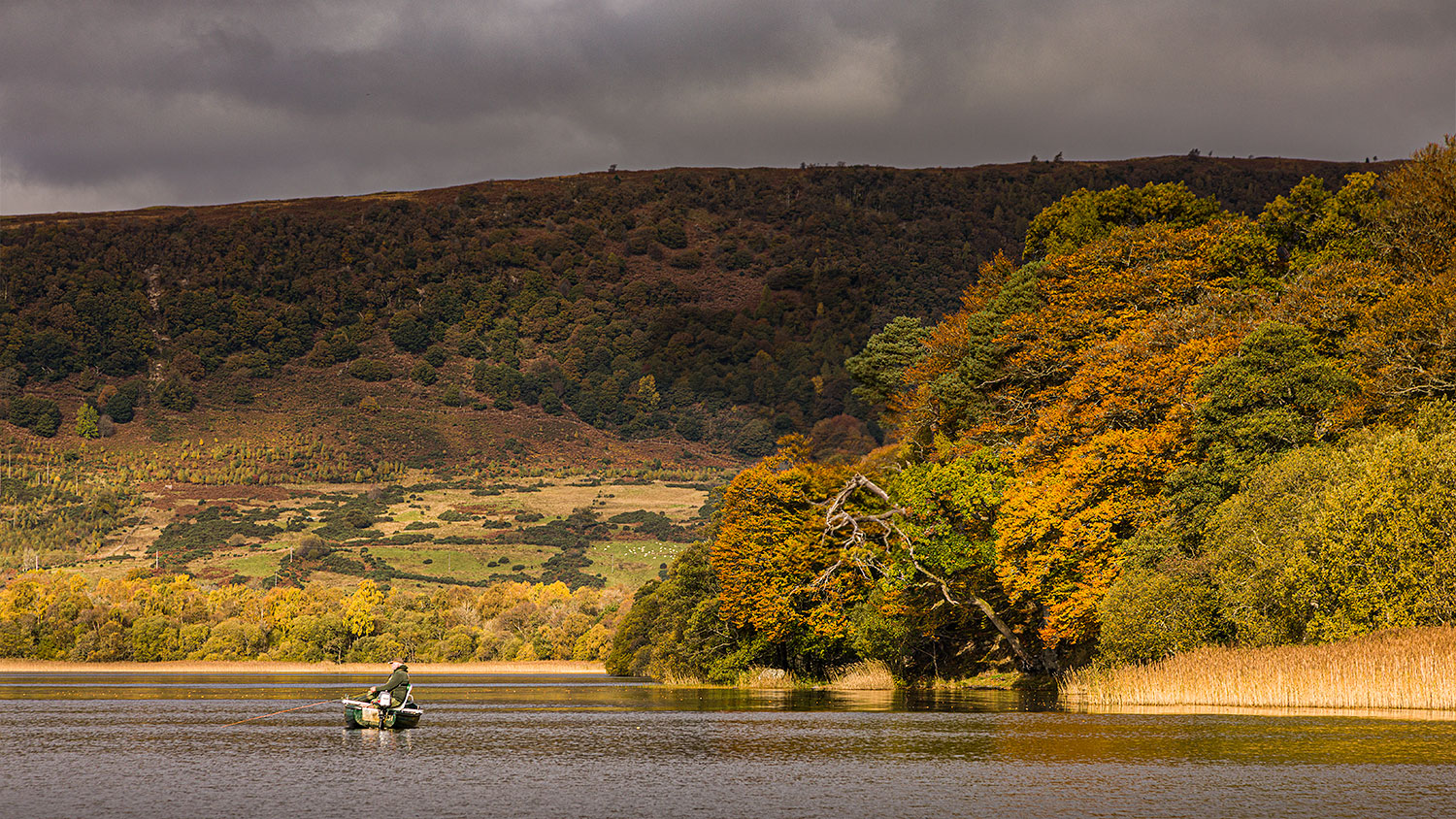 Menteith16Oct20_4488-HDR.jpg